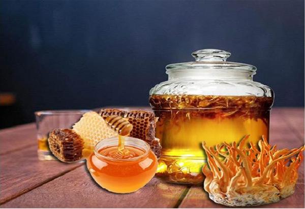 cách sử dụng đông trùng hạ thảo khô ngâm mật ong